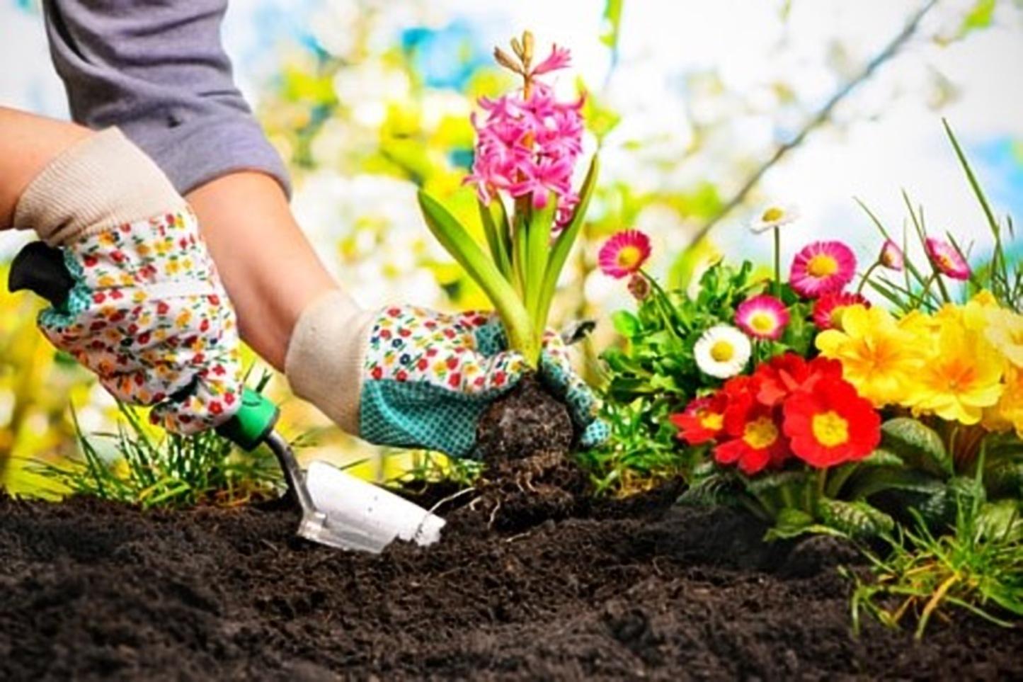 kleurencombinatie voor in de tuin.v2