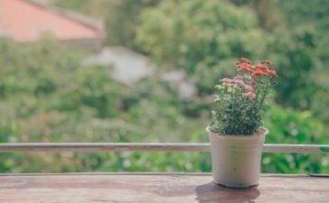 3 tips voor opbergruimte in je tuin