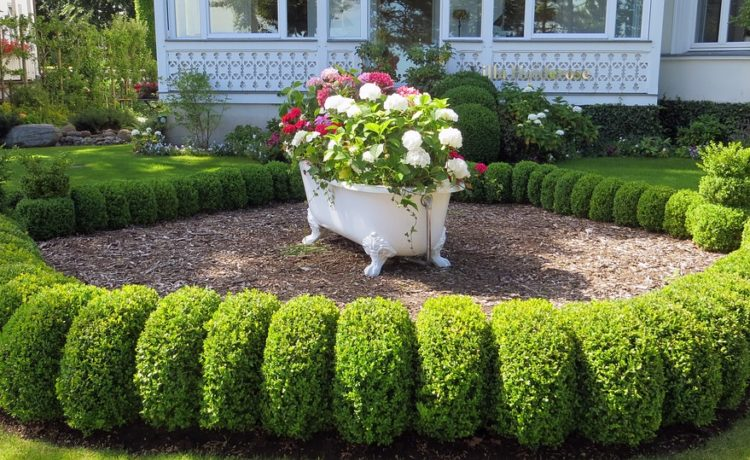 Een onderhoudsvriendelijke tuin