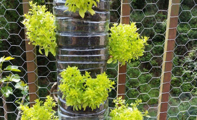 Je tuin beschermen tegen ongenode gasten