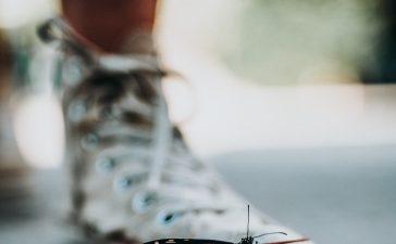Horren: dé perfecte manier om muggen buiten de deur te houden